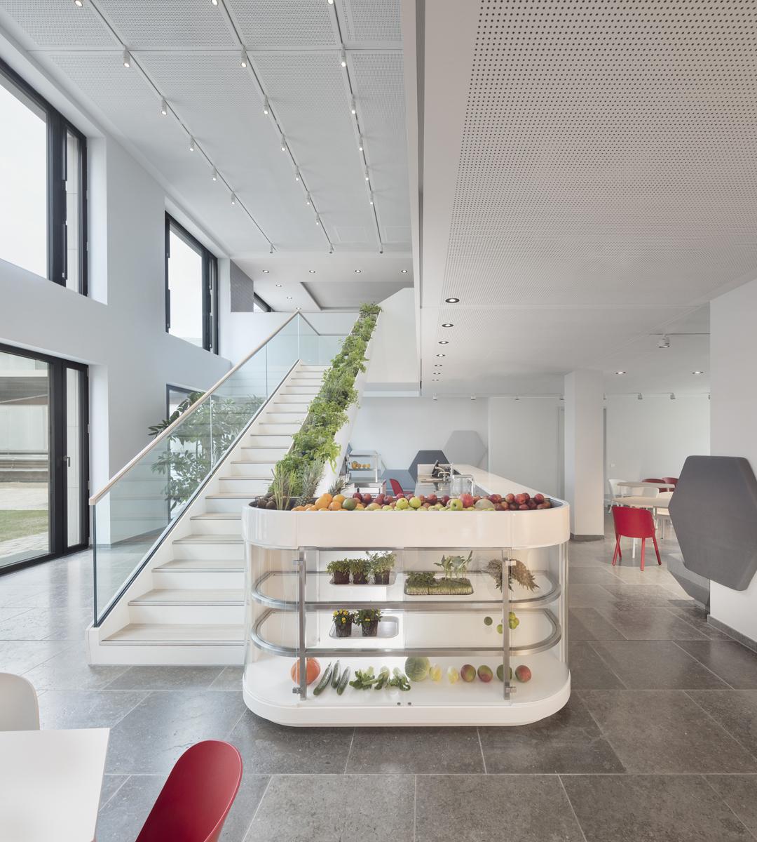 Helle Cafeteria mit zentraler Espresso- und Smoothie-Bar und Treppe nach oben in die Kantine. In der Barvitrine werden mit Pflanzenleuchten Jungpflanzen für Smoothies kultiviert. Die Treppenseite ist mit Kräutern bepflanzt.